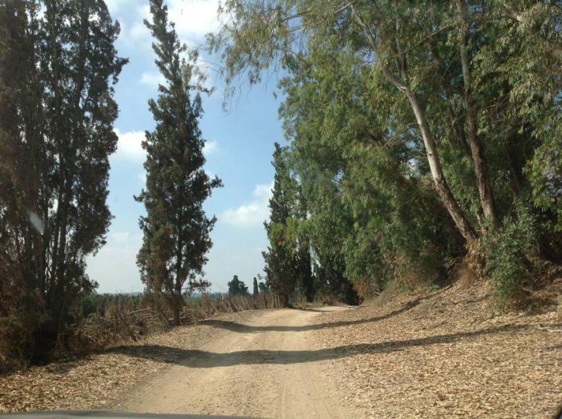 Israel - Beit Herut cemetery path